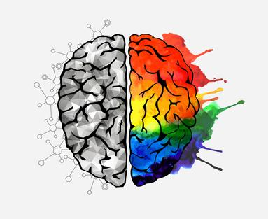 brain intelligence creativity